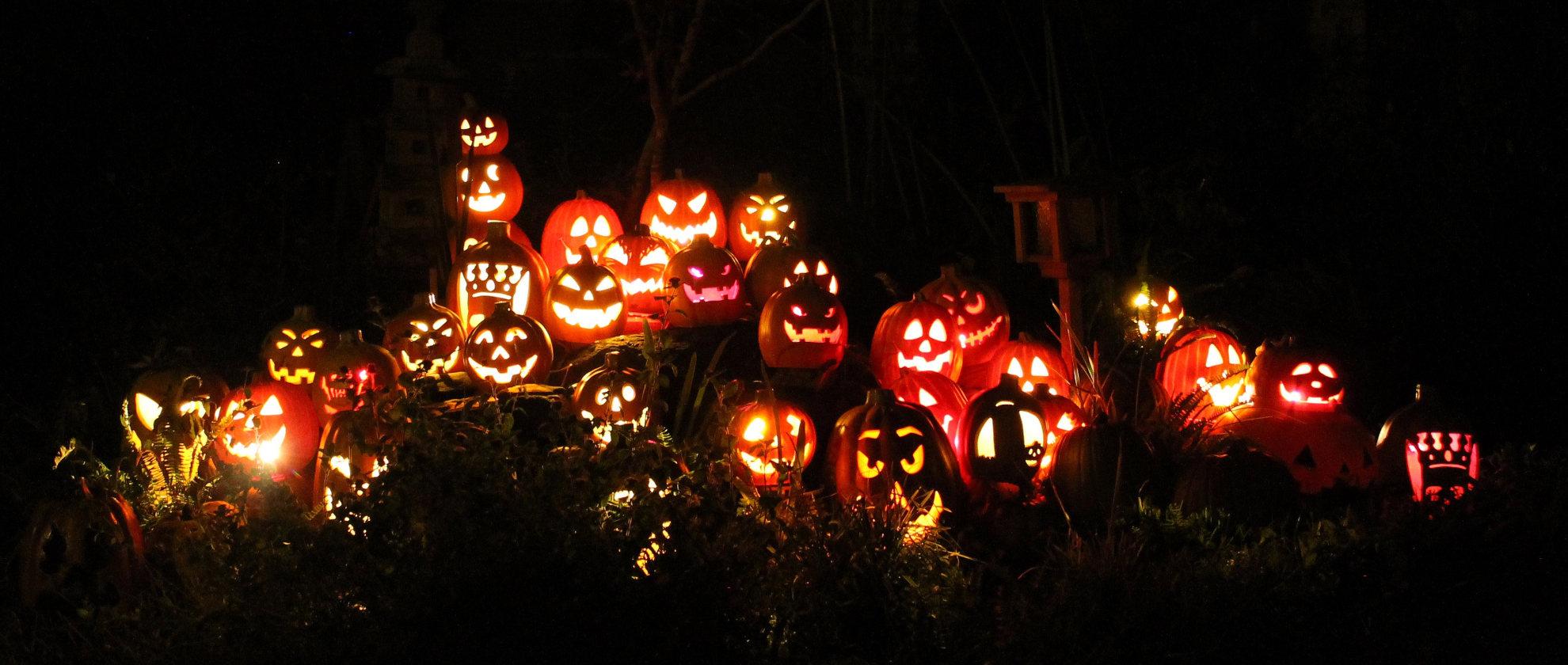 Tasty Treats: Ghoulishly Tasty Halloween Treats